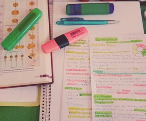 bio, colors, and inspiration image