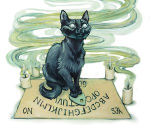 black cat, ouija, and ouijouija board image