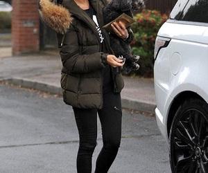 dog, fashion, and fur image