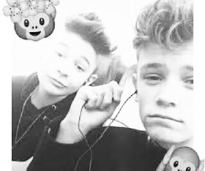 bars and melody and bambinos image