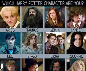 characters, harry potter, and zodiac image