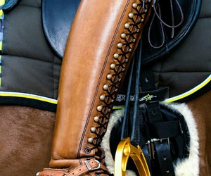 dressage, riding, and equestrian image