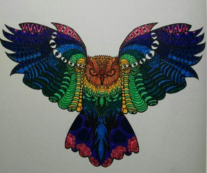 color, palomita, and draw image