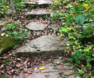 stone steps, stairs, and stone stairs image