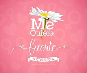 mujer, rosa, and me quiere image