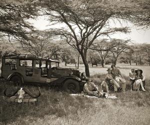 break, black and, and safari image
