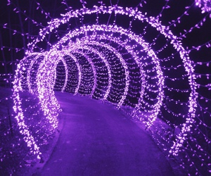 purple, light, and violet image
