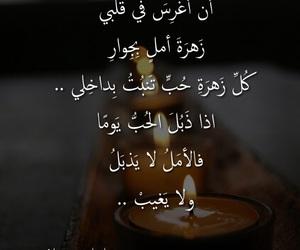 arabic, poem, and quotation image