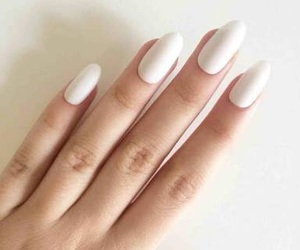 almond, nails, and cute image