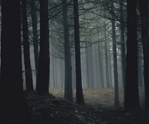 dark, black, and fog image