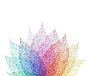 art, color, and rainbow image