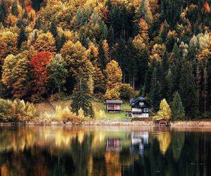 fall, autumn, and lake image