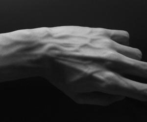 black and white, veiny, and hand image