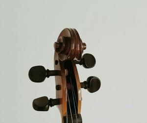 bass, cello, and viola image
