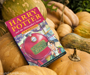 autumn, girl, and harry potter image