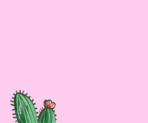 cactus, phone, and pink image