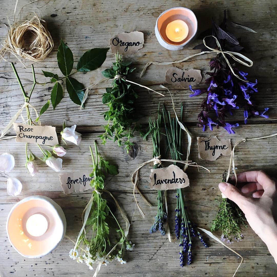 herbs, candle, and health image