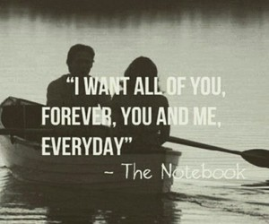 love, quote, and the notebook image