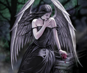 angel and anne stokes image