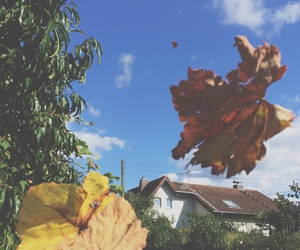autumn, tumblr, and Herbst image