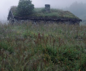 autumn, house, and green image