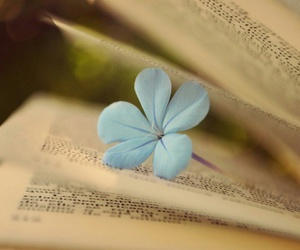 blue flowers, books, and flowers image