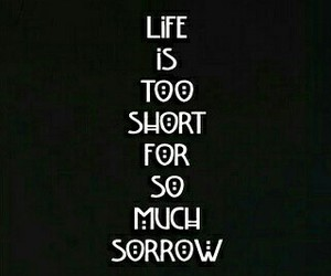 ahs, life, and sorrow image