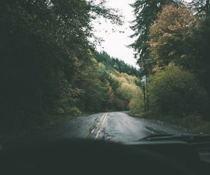 photography, travel, and nature image