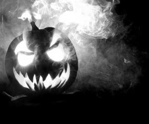 Halloween, pumpkin, and photography image