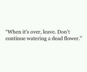 quotes, dead, and flower image