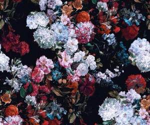 beautiful, flowers, and textures image
