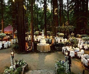 wedding, forest, and beautiful image