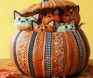 Halloween, pumpkin, and kittycat image