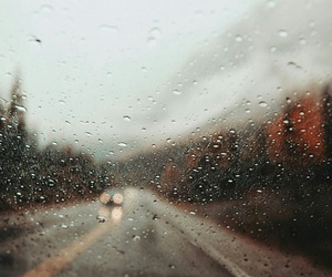 autumn, photography, and rain image