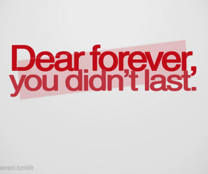 quote, forever, and text image
