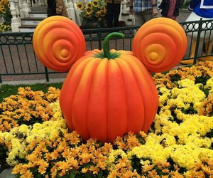 autumn, disney, and fall image