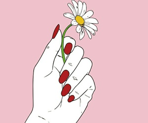 flowers, pink, and hand image