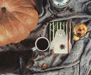 autumn, cofee, and grunge image