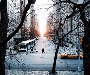 city, new york, and trees image