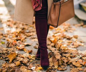 style, autumn, and background image