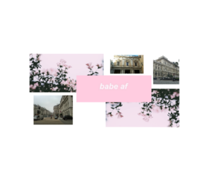 flowers, header, and london image