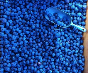 blue, blueberry, and berries image