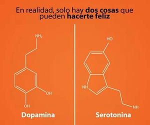 felicidad, feliz, and serotonina image