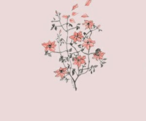flowers, header, and pink image