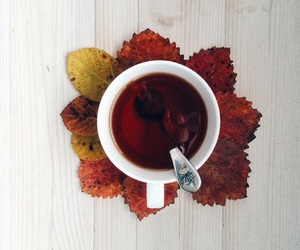 autumn, cup, and fall image