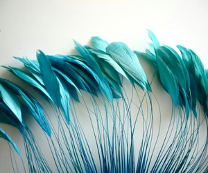 green, plumes, and turquoise image