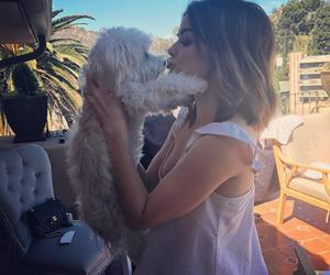 lucy hale, dog, and pretty little liars image