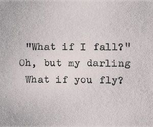 quotes, fly, and fall image