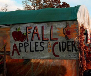 fall, autumn, and apple image