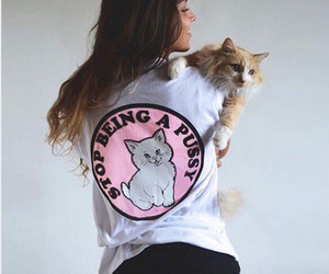 beautiful, cat, and cool image